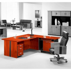 Executive Office Desk N29