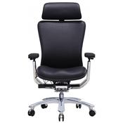 Secretarial/Task Chairs (10)