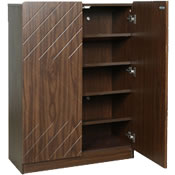 Shoe Cabinets (1)