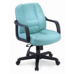 Executive Mid Back Leather Orthopedic office Chair DK 03L