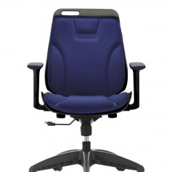 Low Back Task office Chair  RX2