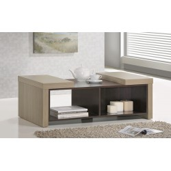 Coffee Table MOCCO21